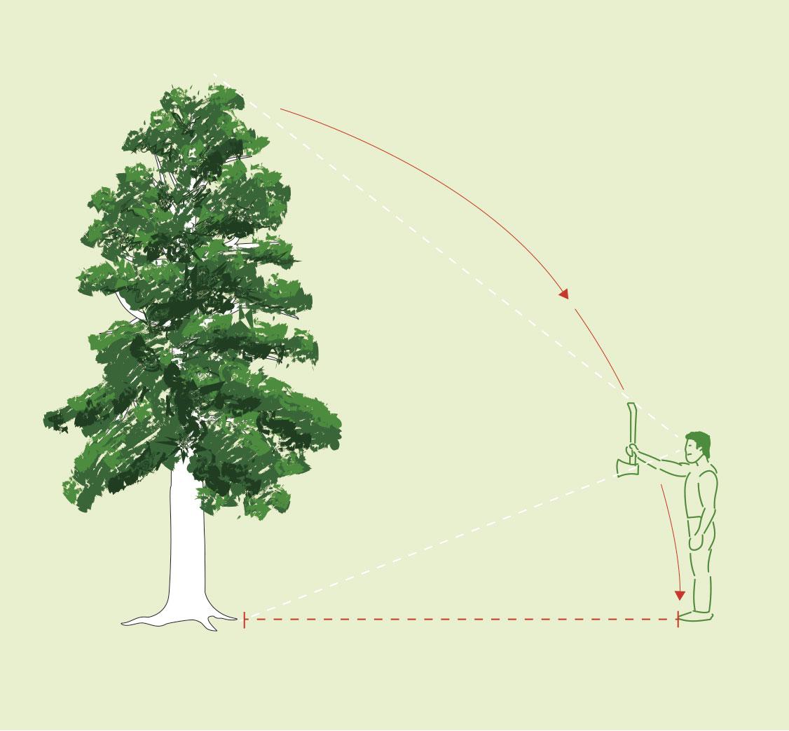 Bäumefällen, abschätzen der Fällzone mit dem Axttrick