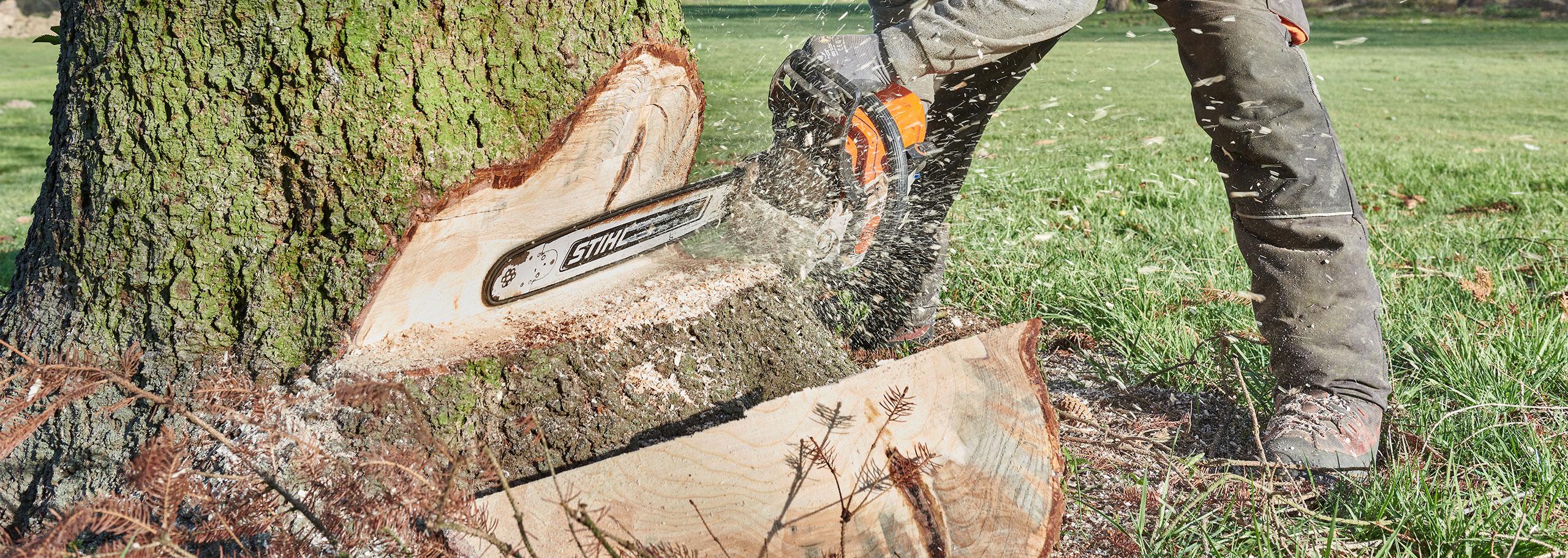 Baumstamm mit Kettensaege einkeilen