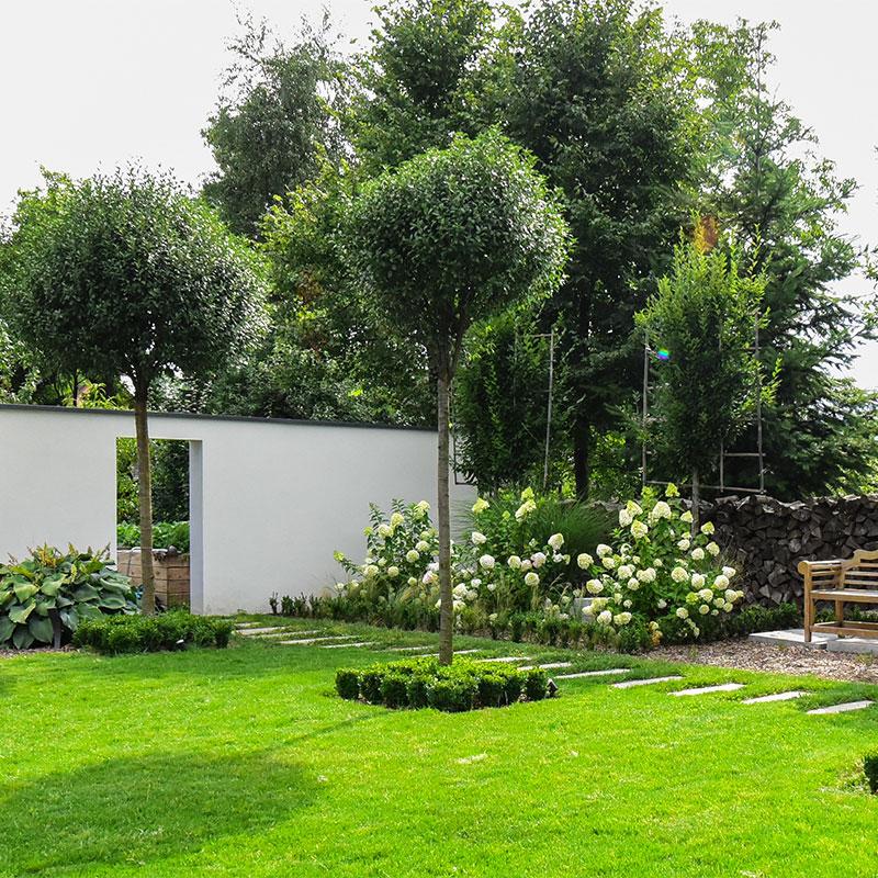 Bäume sind ein wichtiger Bestandteil in jeder Gartengestaltung