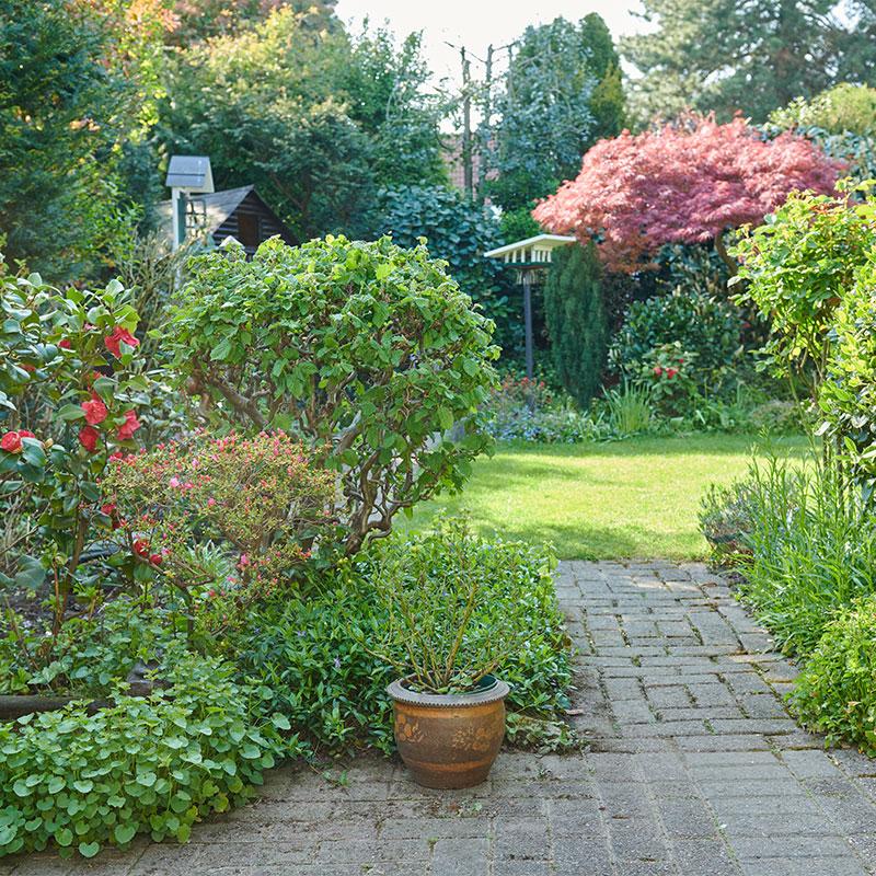 Serviceleistungen für Ihren Garten