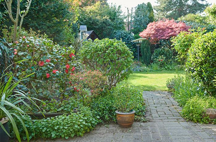 Gartenpflege und Gartenservice