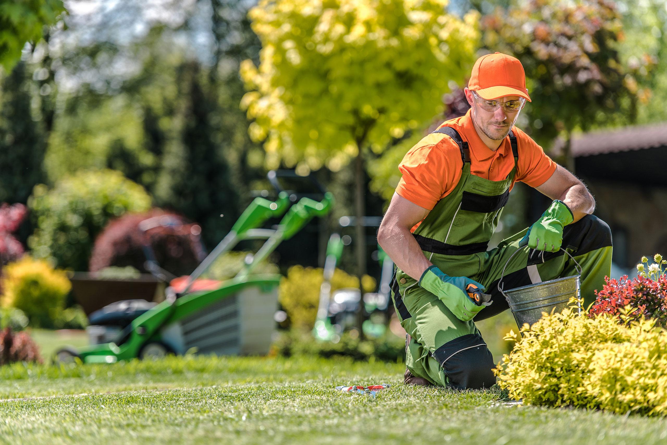 Leistungsübersicht für Gartenbau und Landschaftsbau