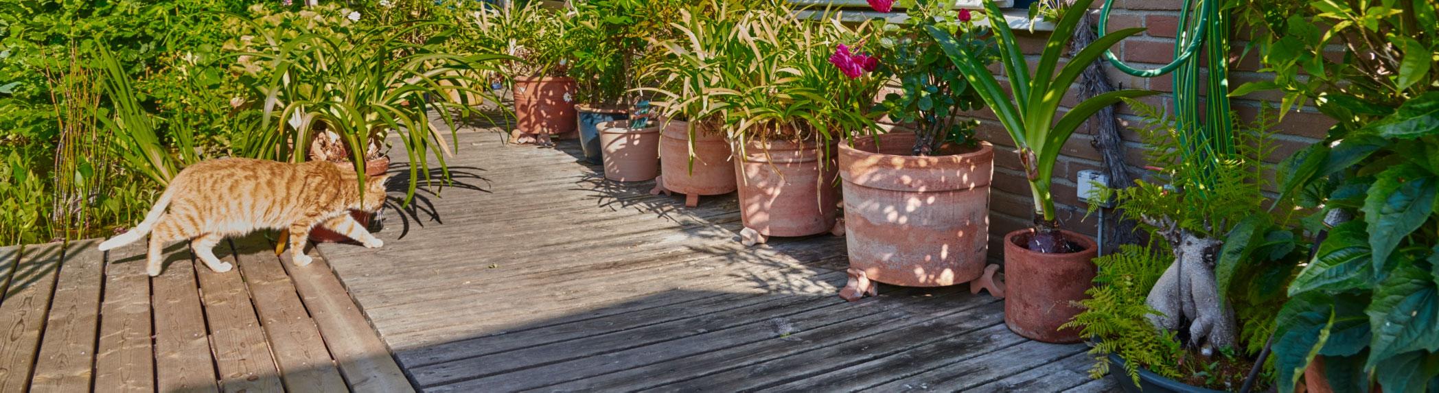 Terrassen und Sitzflächen – Ihr Zimmer im Freien.