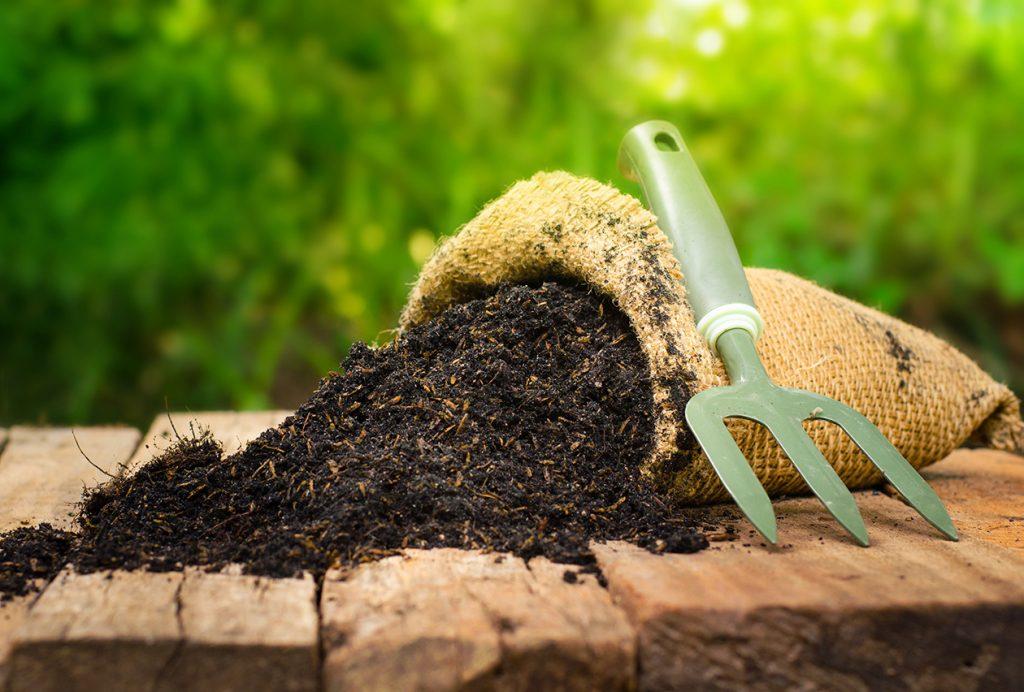 Die Bodenqualität spielt eine wichtige Rolle für das Wasserhaltevermögen Ihres Gartens.