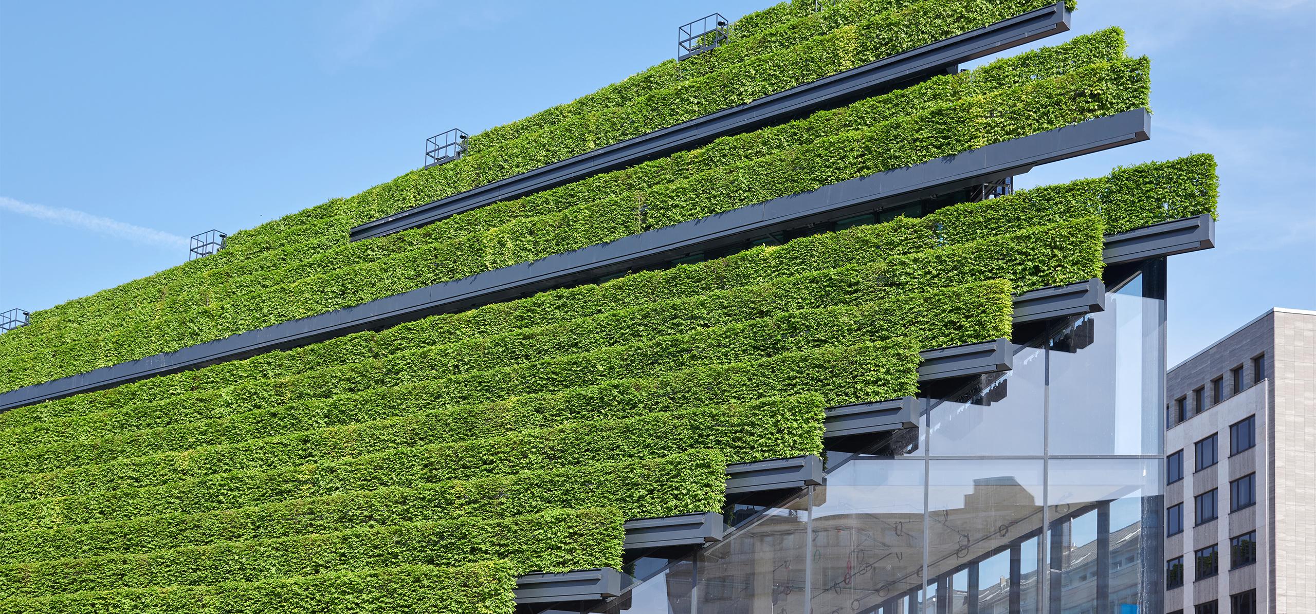 Moderne Architektur mit begrünter Hausfassade