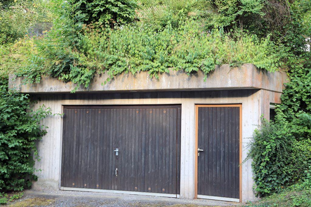 Intensivbegrünung – Hoch wachsende Dachbegruenung
