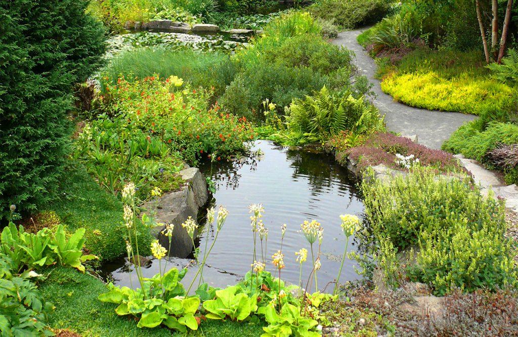 Naturnahe Gartenteiche mit abwechslungsreicher Randbepflanzung
