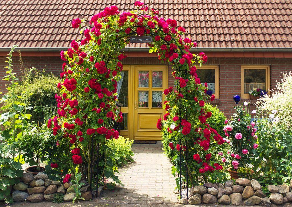 Vorgarteneingang mit prächtigem Rosentor