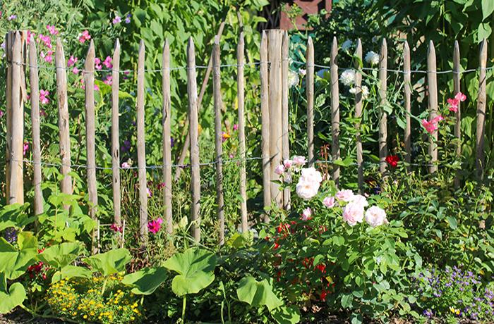 Staketenzaun als Gartenbegrenzung
