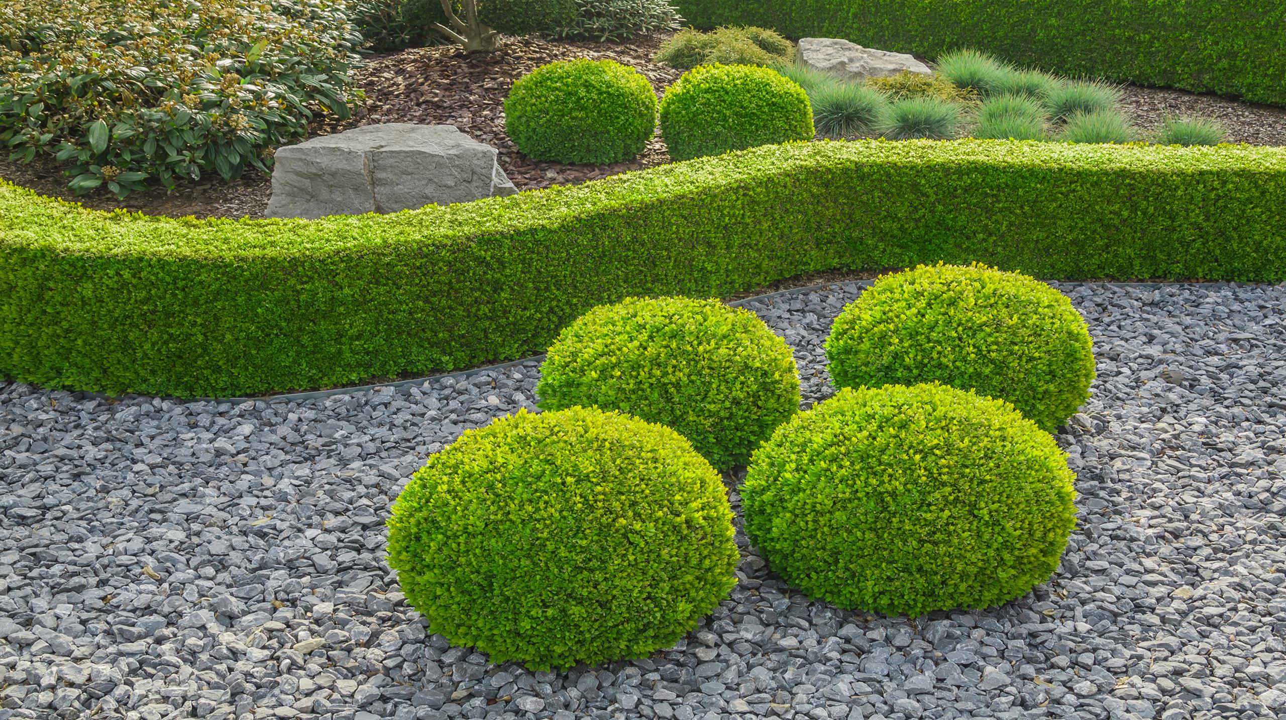 Pflegeleicht gestalteter Vorgarten.